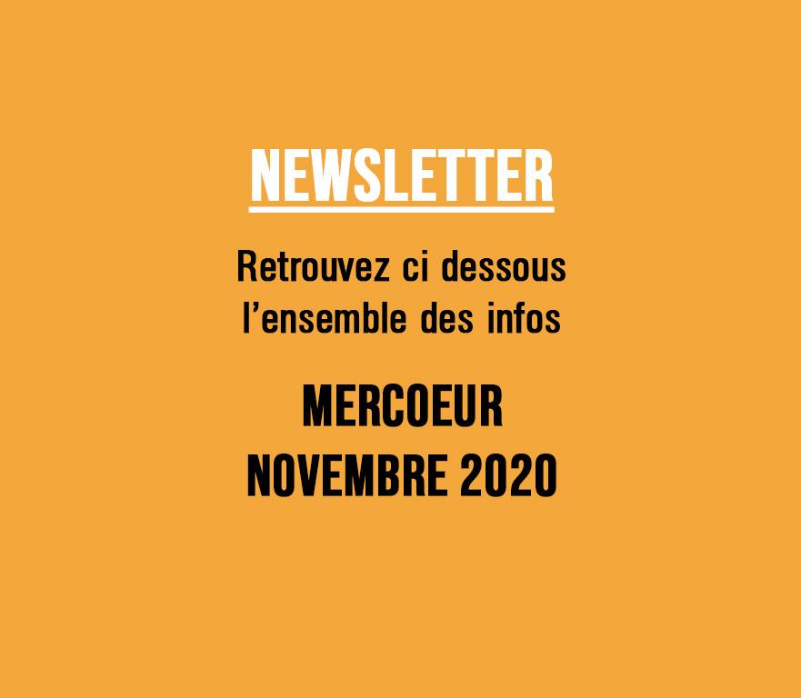 NEWSLETTER NOVEMBRE 2020